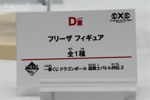 DSC_5579a