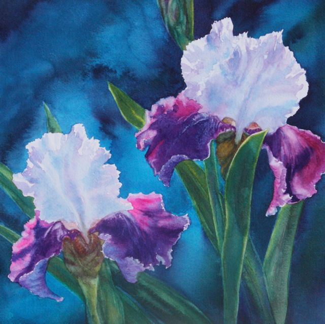 Painting by Lynne Baur of purple and white irises on a dark turquoise background