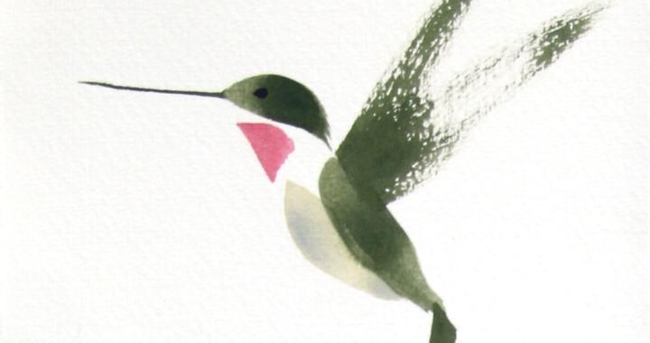 Hummingbird brush drawing.