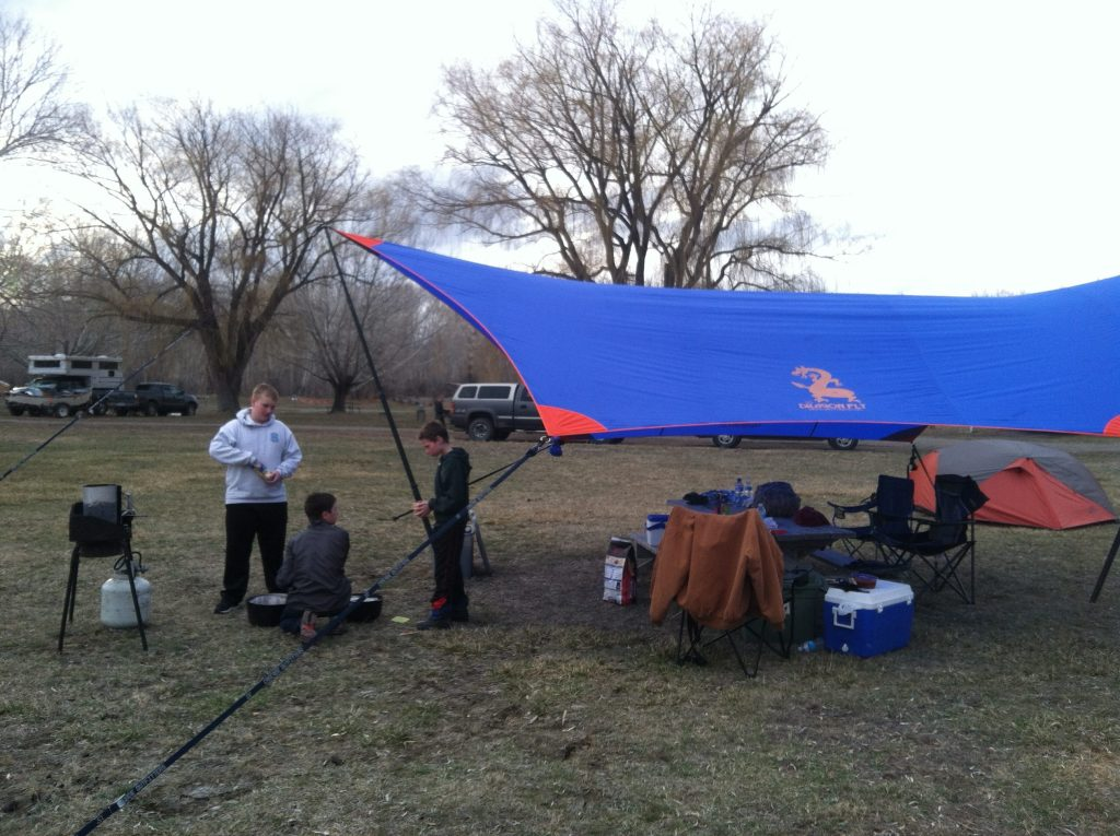 Dragon Fly Tarp - Pendragon