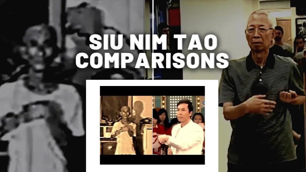 Siu Nim Tao Comparisons