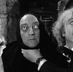 image of young Frankenstein cast