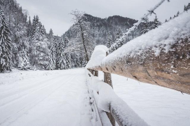 goodyear-winter-ziua-1-39