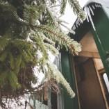 goodyear-winter-ziua-2-24
