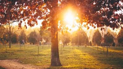Toamna în București -Parcul Izvor