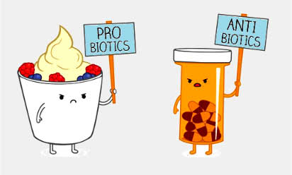 probiyotik ile ilgili görsel sonucu