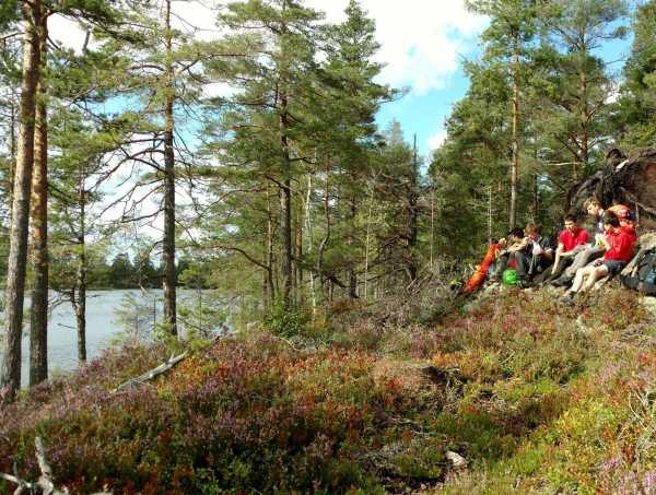 Tondel Zweden