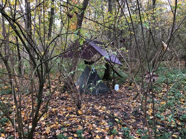 Survival Bushcraft Polen