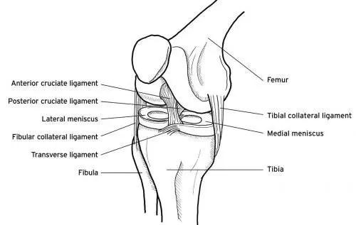 meniscus el paso tx.