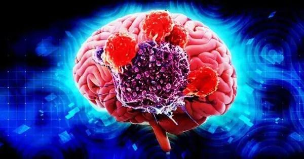 blog de imágenes del cerebro con la parte cortada para ver el interior rodeado de un fondo azul brillante