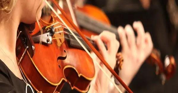 blog de imágenes de violinistas realización de cerca