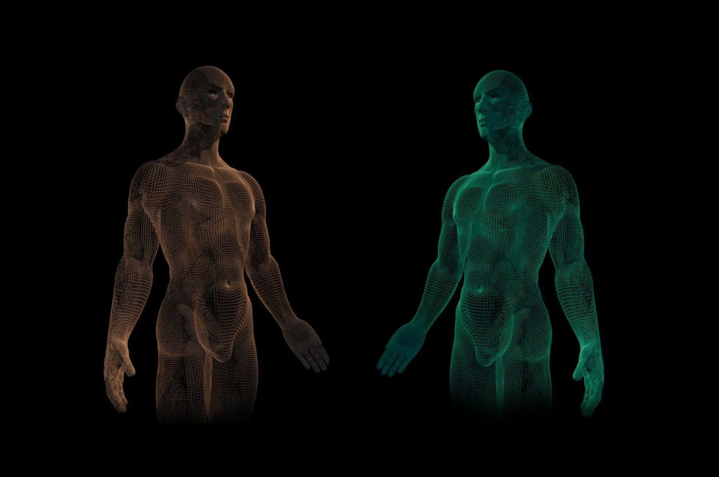 blog illustration of the human form side by side