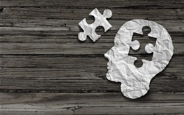 blog picture of cut out of a human head with the brain as a puzzle piece