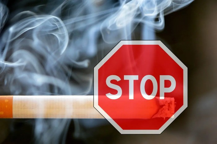 blog de imágenes de cigarrillo con una señal de stop en frente de ella