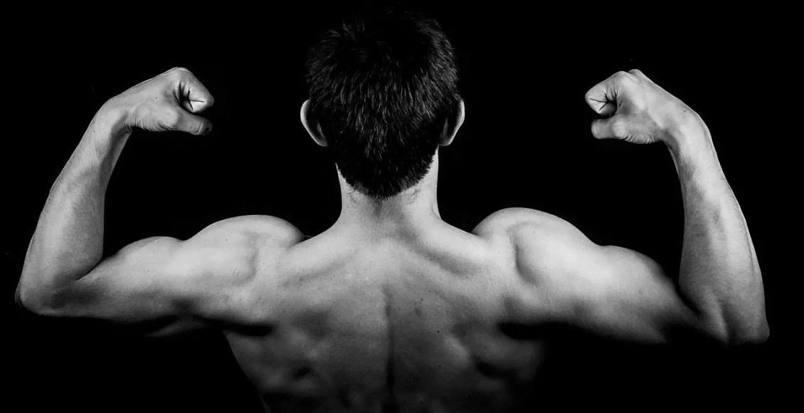 blog de imágenes del hombre que dobla los músculos de la espalda