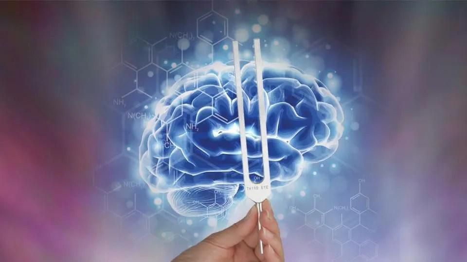 Quiropráctica puede ajustar el cerebro