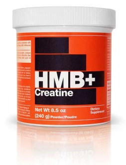ergogenic creatine