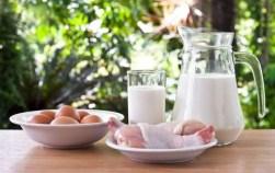 nutrition milk drink health fat healthy