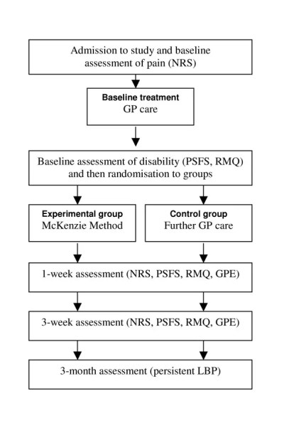 Figure 1 Flow of Participants Through the Study
