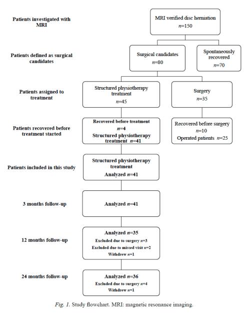 Figure 1 Study Flowchart