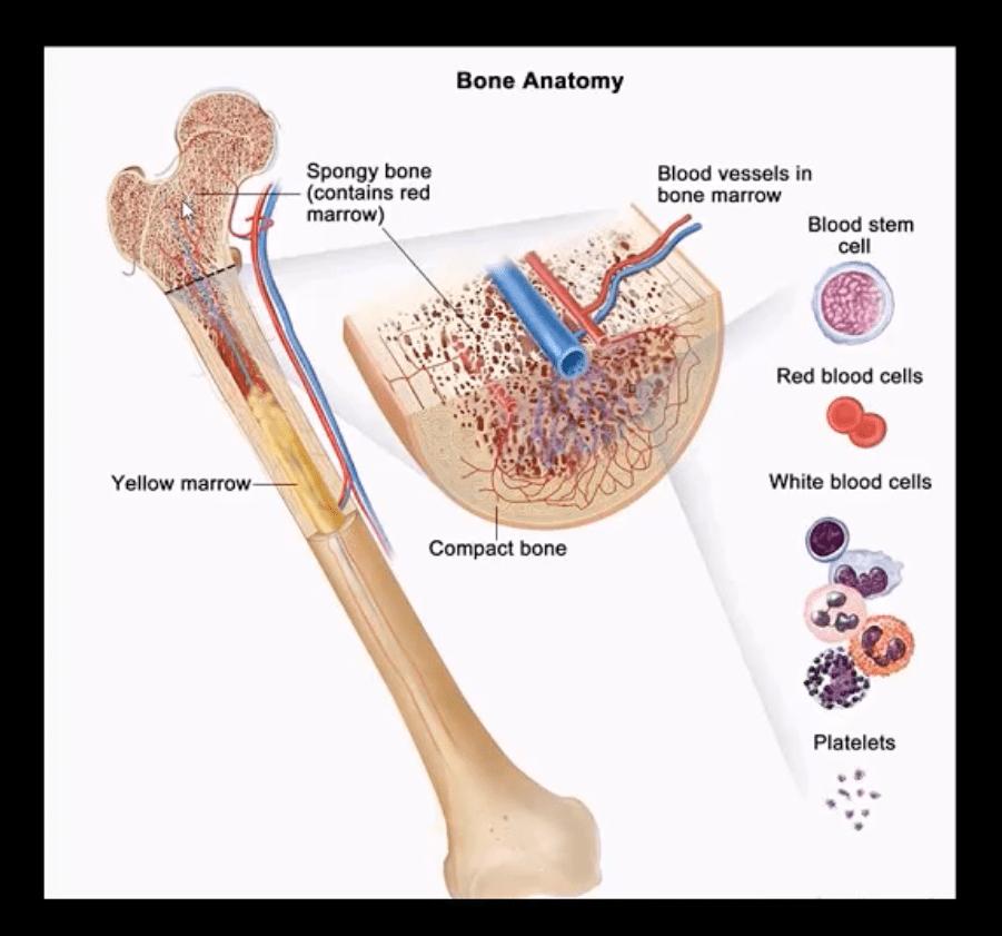 neoplasms diagnostic imaging el paso tx.