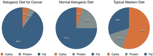Dieta 1600 calorias endocrinologista