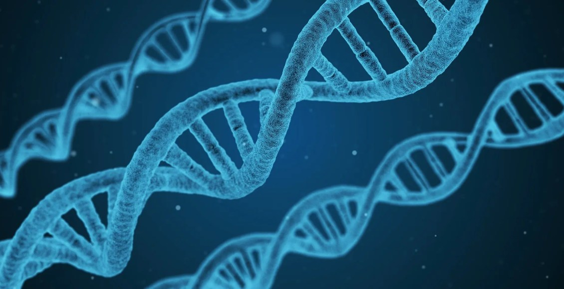 Биохимия метилирования ДНК | Эль Пасо, Техас Хиропрактик