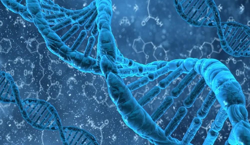 Plasticidad de metilación de ADN | El Paso, TX Quiropráctico