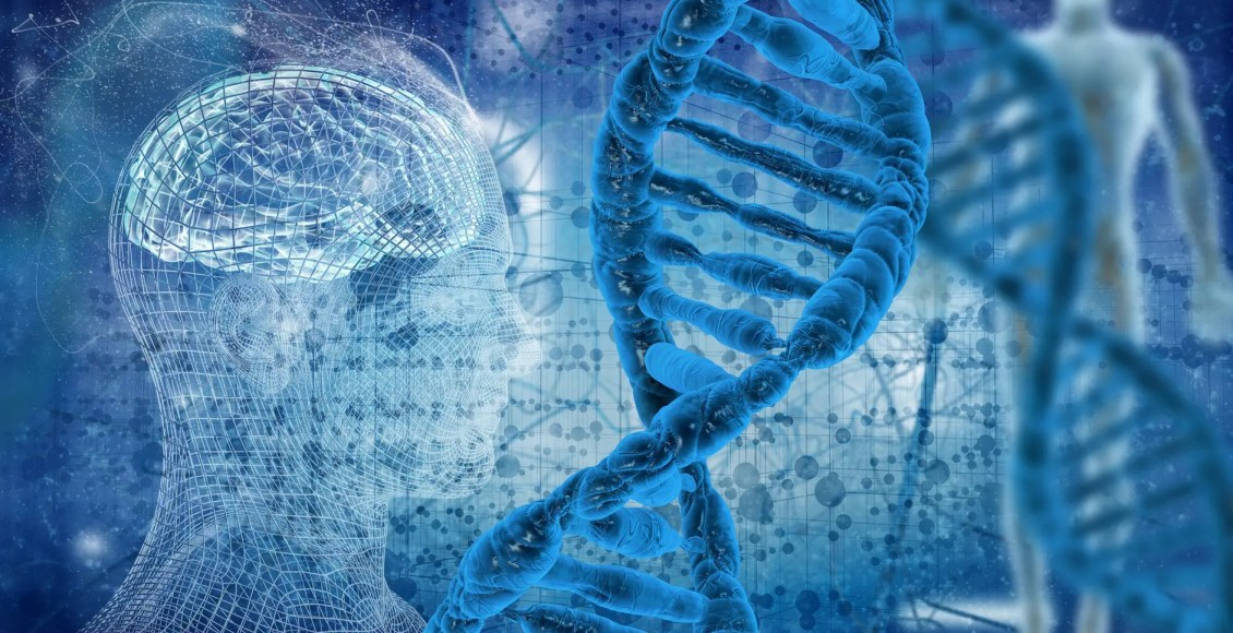 Methylation Donors For Methylation Support | El Paso, TX Chiropractor