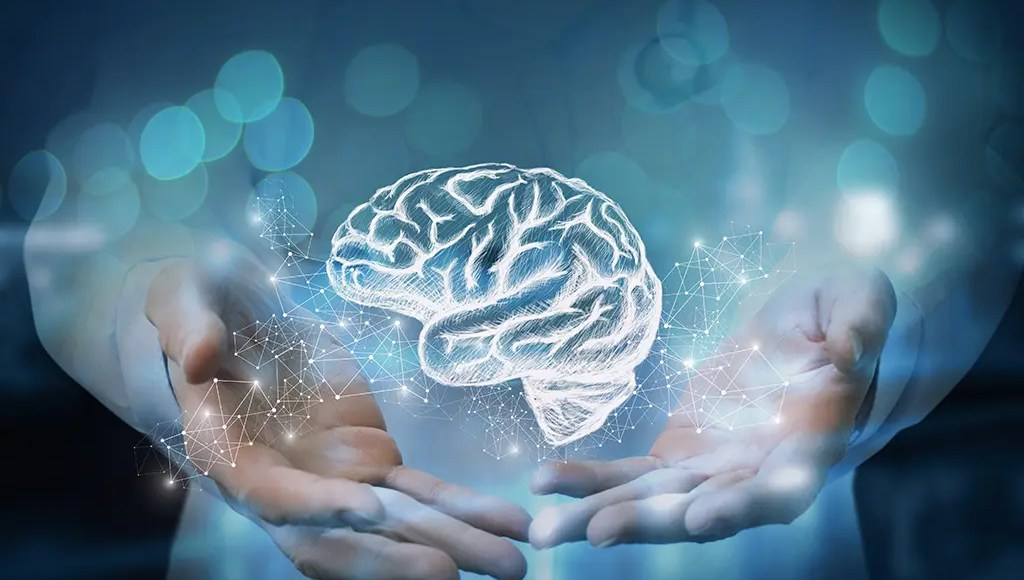 Functional Neurology: How to Naturally Improve Brain Fog | El Paso, TX Chiropractor