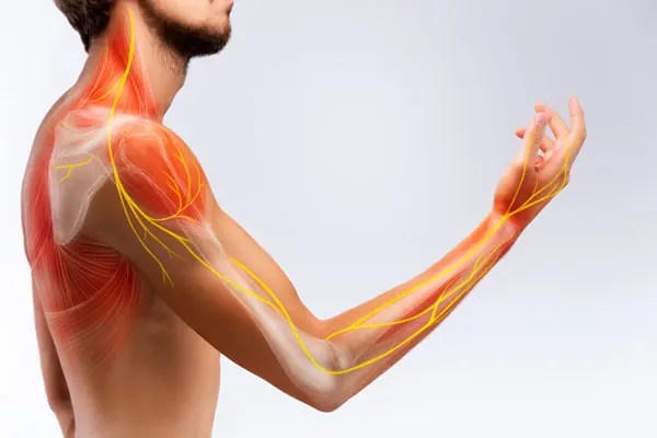 11860 Vista Del Sol, Ste. 128 Chiropractic Relief From Pinched Nerves