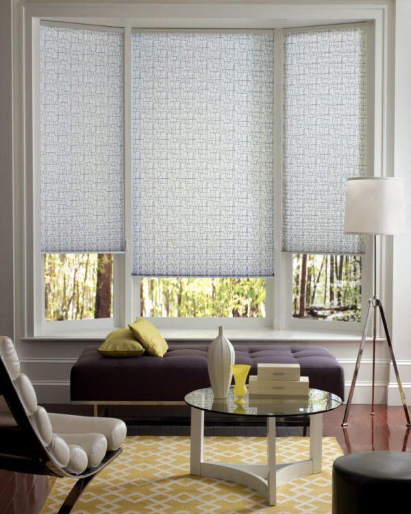 Hunter Douglas Window Blinds Shades