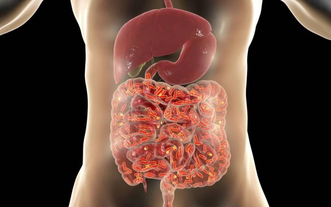 La microbioma puede influir en la gravedad de la Covid-19