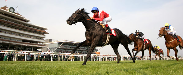 Image result for newbury races