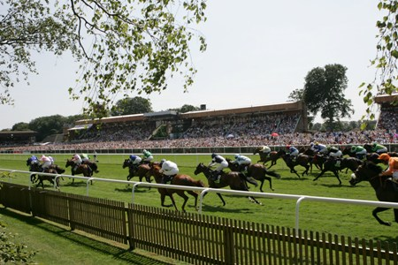 Image result for newmarket july