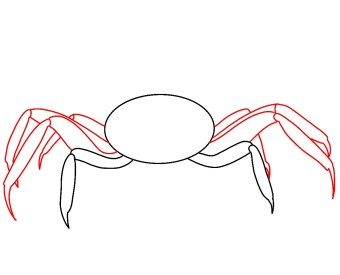 How To Draw A Crab Step 3