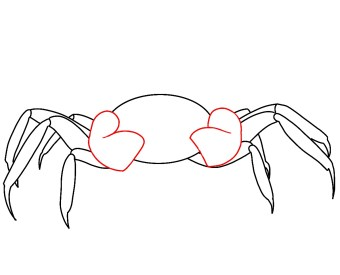 How To Draw A Crab Step 4