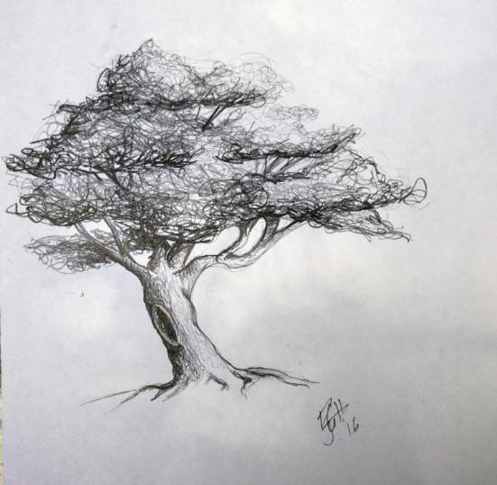 "That tree from 4th grade-or at least my drawing from memory. A part of me thinks, ""4th grade?! It couldn't have looked as good as this-but I did remember the bent trunk, gaps and branches in the leaves, the textured trunk and the hole in the trunk. Shows you how much I drew it-I remembered it more than two decades later! (how much more than two decades will remain a secret...)"