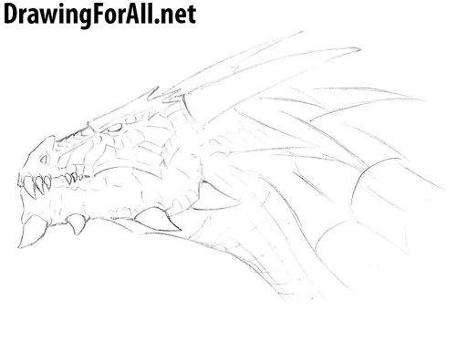 learn how to draw a head of dragon