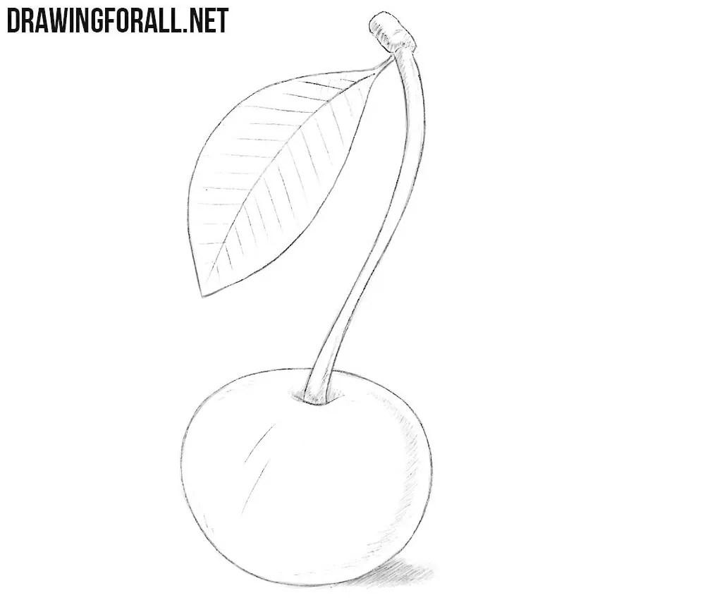 How to Draw a Wild Cherry