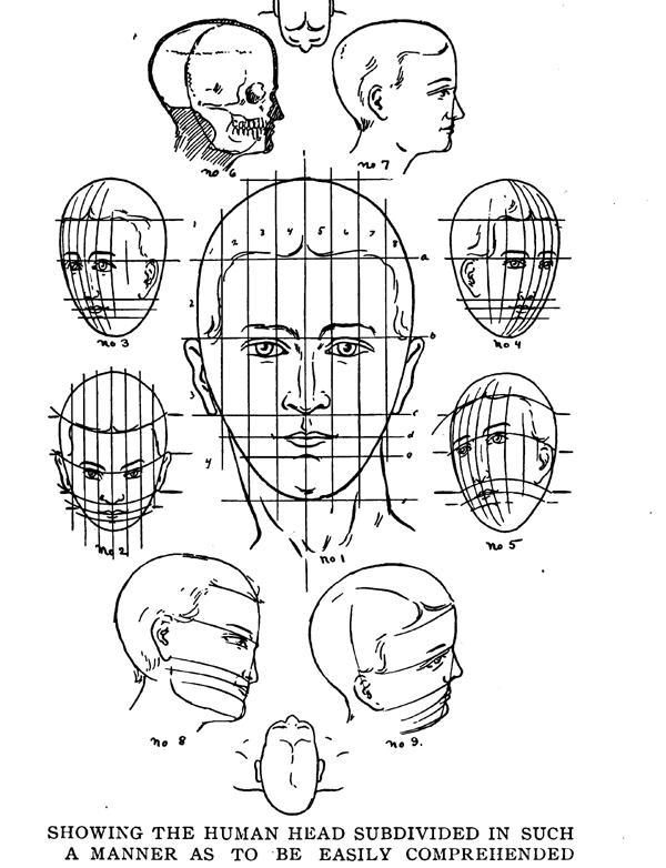 Drawing the Human Body & Figure by Memorizing Human