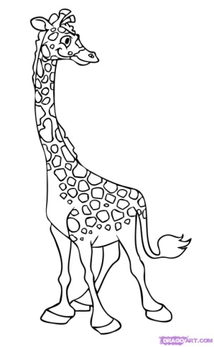 How to Draw Giraffes : Drawing Tutorials & Drawing & How