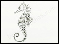 How to Draw Seahorses : Drawing Tutorials & Drawing & How