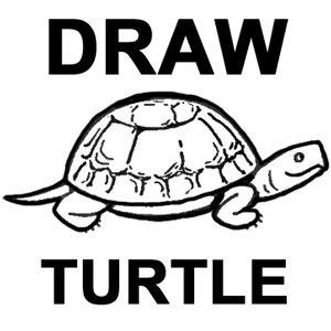 How to Draw Turtles with Easy Step by Step Drawing