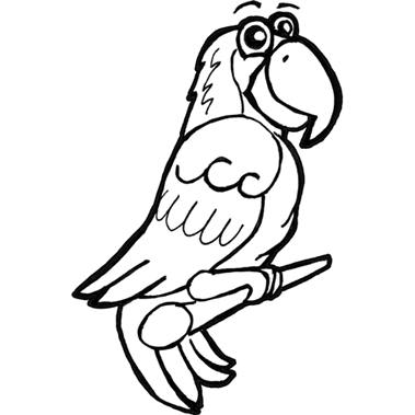 How to Draw Cartoon Parrots & Macaws with Step by Step