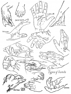 Drawing Hands : Techniques for How to Draw Hands With