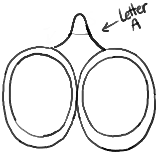 How to Draw Scissors with Easy Step by Step Drawing