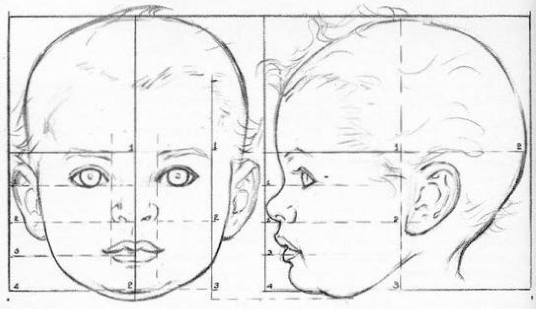 How To Draw Baby And Toddlers Heads In The Correct