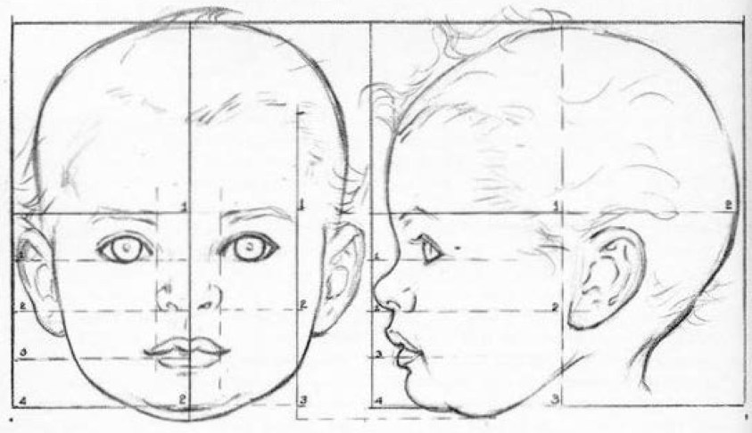 How to Draw Baby and Toddlers Heads in The Correct ...