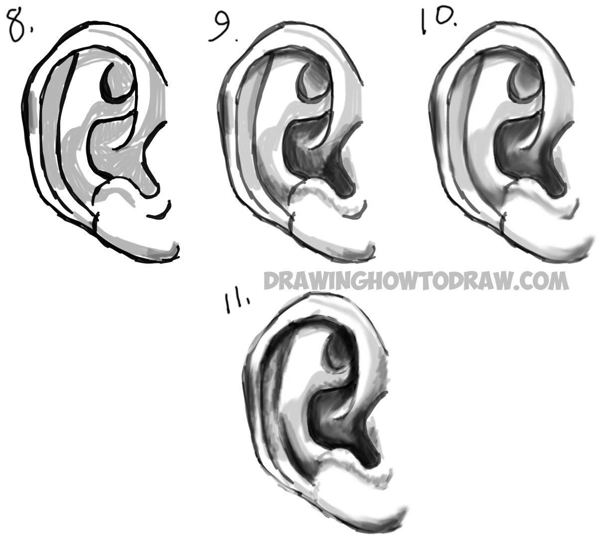 Learn How to Draw Ears and How to Shade Them : Drawing and